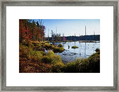 Fall Palate  Framed Print by Sue OConnor