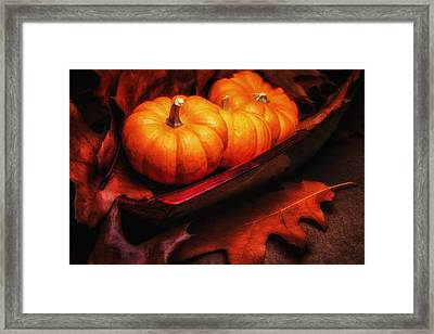 Fall Pumpkins Still Life Framed Print by Tom Mc Nemar