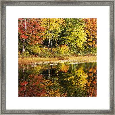 Fall Reflection Framed Print by Chad Dutson