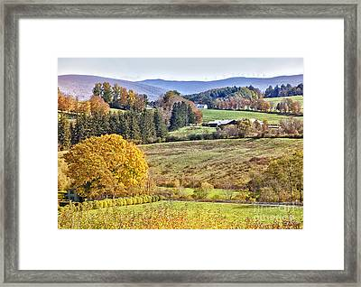 Fall Scenery Framed Print by Stuart Monk