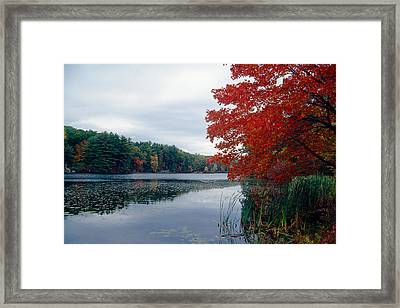 Fall Scenic Little Long Pond Harriman State Park New Framed Print by George Oze