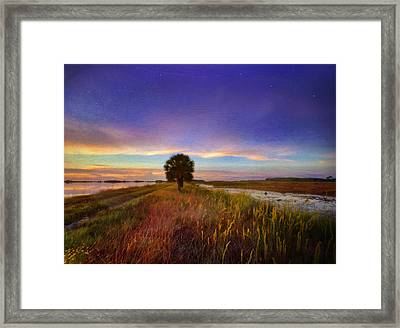 Fall Sunrise - In The Marshes Of St. Marks Framed Print by Kathryn  Stivers