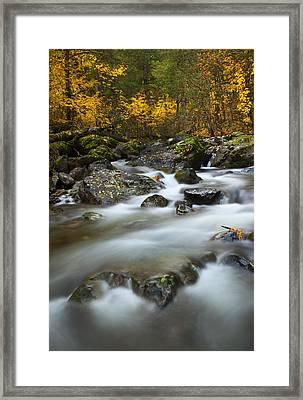 Fall Surge Framed Print by Mike  Dawson