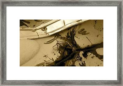 Fallen Impala Framed Print by Alpha Pup