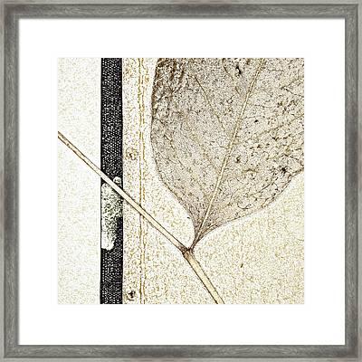 Fallen Leaf Two Of Two Framed Print by Carol Leigh