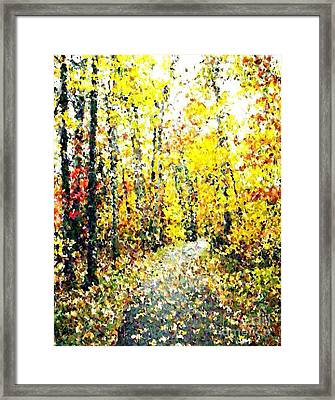 Fallen Leaves Of Autumn Framed Print by Don Phillips