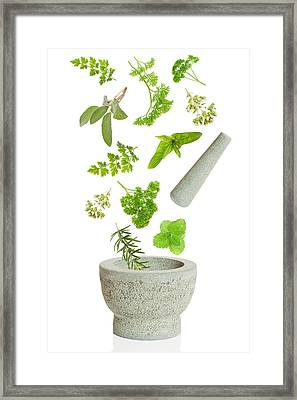 Falling Herbs Framed Print by Amanda And Christopher Elwell