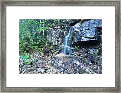 Falling Waters Framed Print by Catherine Reusch  Daley