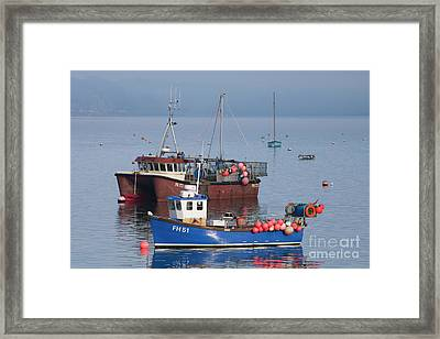 Falmouth Fishing Boats Framed Print by Terri Waters