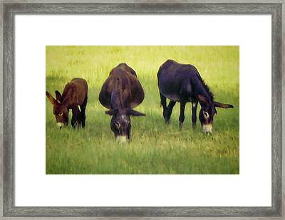 Family Framed Print by Jan Amiss Photography