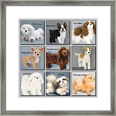 Famous Dogs Framed Print by David and Lynn Keller