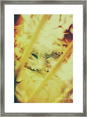 Fanning The Drama Framed Print by Jorgo Photography - Wall Art Gallery
