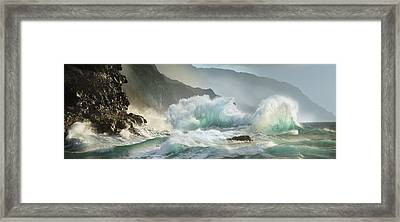 Fantails Framed Print by Sun Gallery Photography Lewis Carlyle