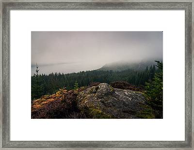 Farigaig Forest In Mist Framed Print by Chris Dale