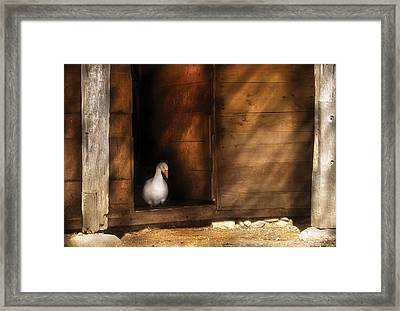Farm - Duck - Welcome To My Home  Framed Print by Mike Savad