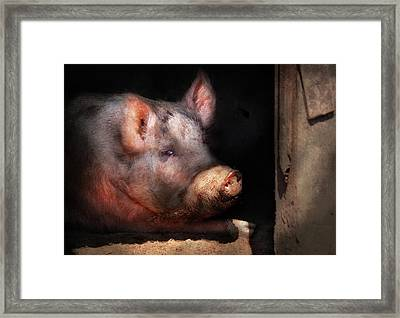Farm - Pig - Piggy Number Two Framed Print by Mike Savad