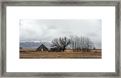 Farm Life Framed Print by Ron Day