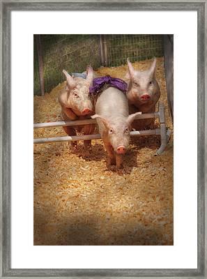 Farm - Pig - Getting Past Hurdles Framed Print by Mike Savad