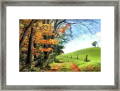 Farm Road Framed Print by Michael Forte