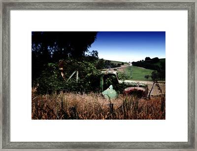 Farmer's Garden Framed Print by Tim Nichols