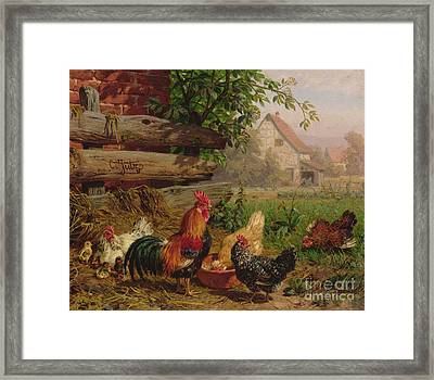 Farmyard Chickens Framed Print by Carl Jutz