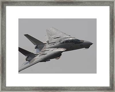 Fast Cat Framed Print by John Clark