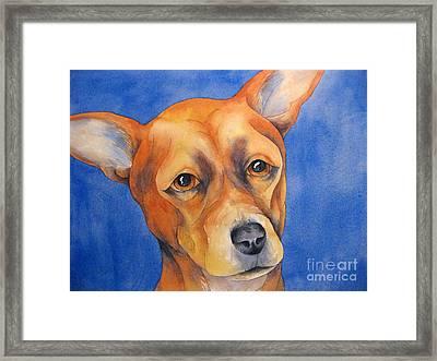 Fawn Chihuahua Framed Print by Cherilynn Wood