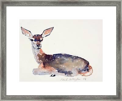 Fawn Framed Print by Mark Adlington