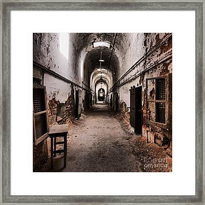 Fear Factor Framed Print by Andrew Paranavitana