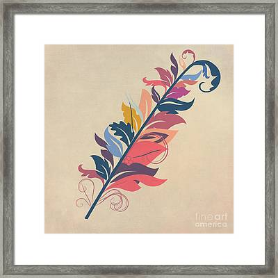 Feather Framed Print by John Edwards