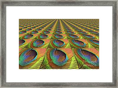 Feathered Landscape By Kaye Menner Framed Print by Kaye Menner