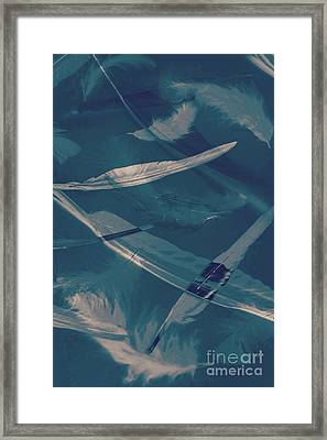 Feathers Floating In The Air Framed Print by Jorgo Photography - Wall Art Gallery