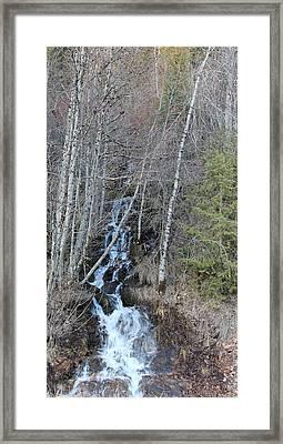 Feeder Creek On Th St Joe River 1 Framed Print by Linda Meyer