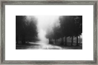 Feel Secure Framed Print by Fulvio Pellegrini