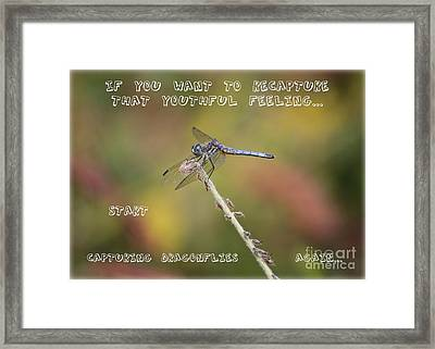 Feel Young Again Framed Print by Carol Groenen