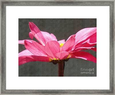 Feeling Free Framed Print by Sue Melvin