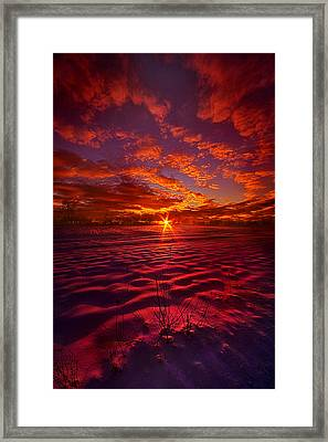 Feeling Good Never Cost A Thing Framed Print by Phil Koch