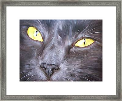 Feline Face 1 Framed Print by Elena Kolotusha