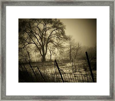 Fence And Tree Framed Print by Michael L Kimble