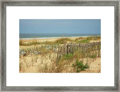 Fence In The Dunes Framed Print by Carlos Caetano
