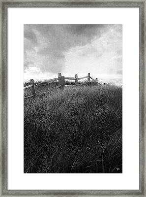 Fence Framed Print by Tom Romeo