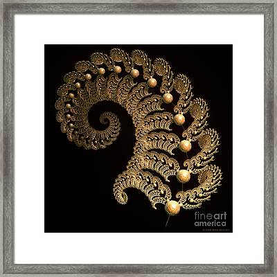 Fern-spiral-fern Framed Print by Deborah Benoit