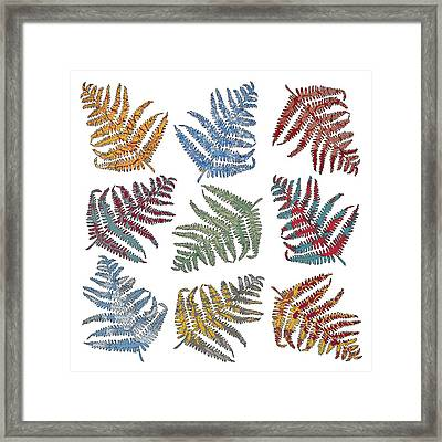 Ferns Framed Print by Sarah Hough