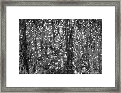 Festival Of Lights Framed Print by YT Photo