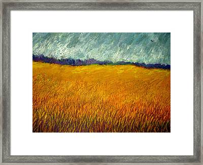 Field At Noon Framed Print by Kent Whitaker