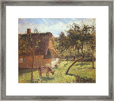 Field At Varengeville Framed Print by Camille Pissarro