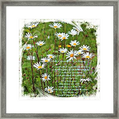 Field Of Daisies Framed Print by Barbara Griffin