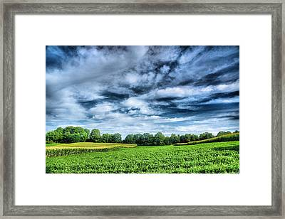 Field Of Dreams One Framed Print by Steven Ainsworth