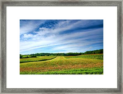 Field Of Dreams Two Framed Print by Steven Ainsworth
