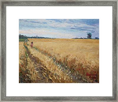 Field Of Grain In Georgetown On Framed Print by Ylli Haruni